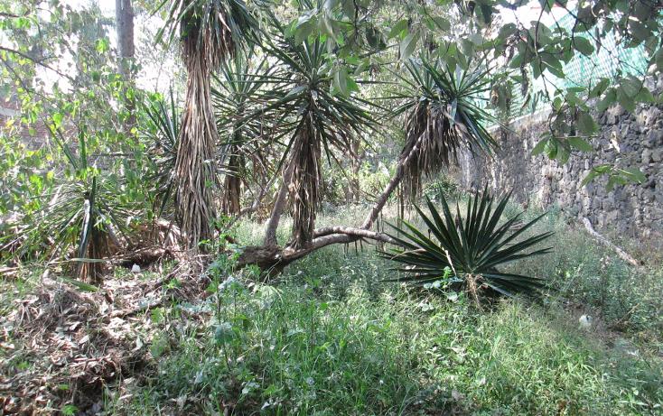 Foto de terreno habitacional en venta en  , santa maría tepepan, xochimilco, distrito federal, 944691 No. 10