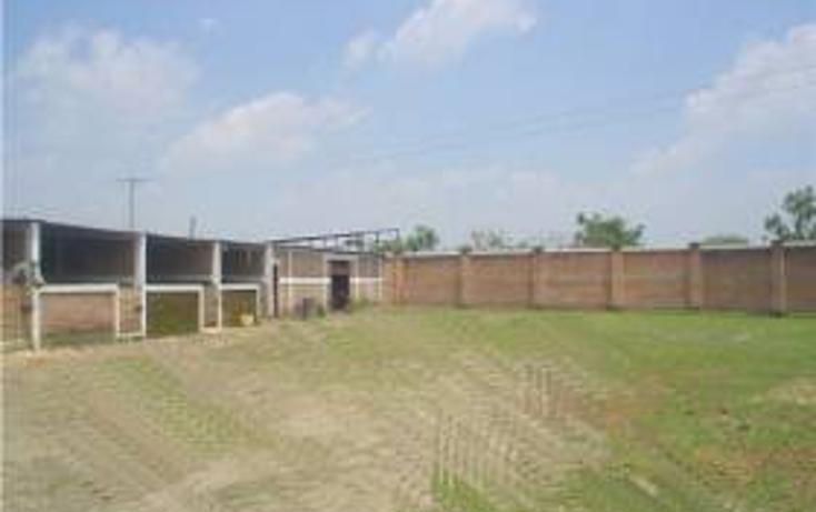 Foto de terreno habitacional en venta en  , santa maría tequepexpan, san pedro tlaquepaque, jalisco, 1704438 No. 02
