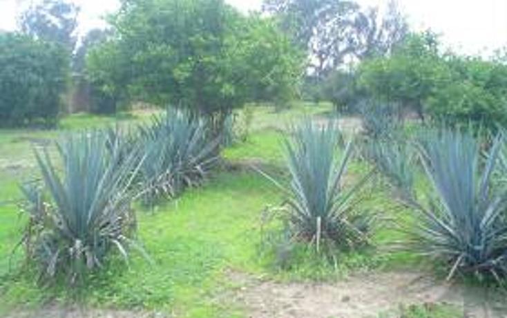 Foto de terreno habitacional en venta en  , santa maría tequepexpan, san pedro tlaquepaque, jalisco, 1704438 No. 06