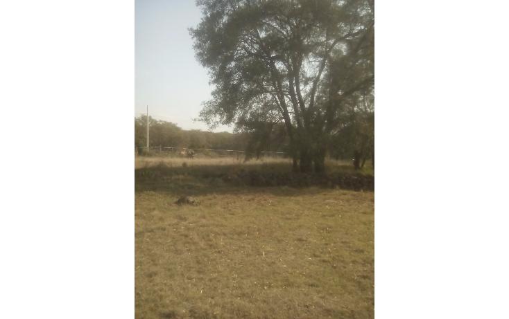 Foto de terreno habitacional en venta en  , santa maria texcalac, apizaco, tlaxcala, 1941371 No. 05