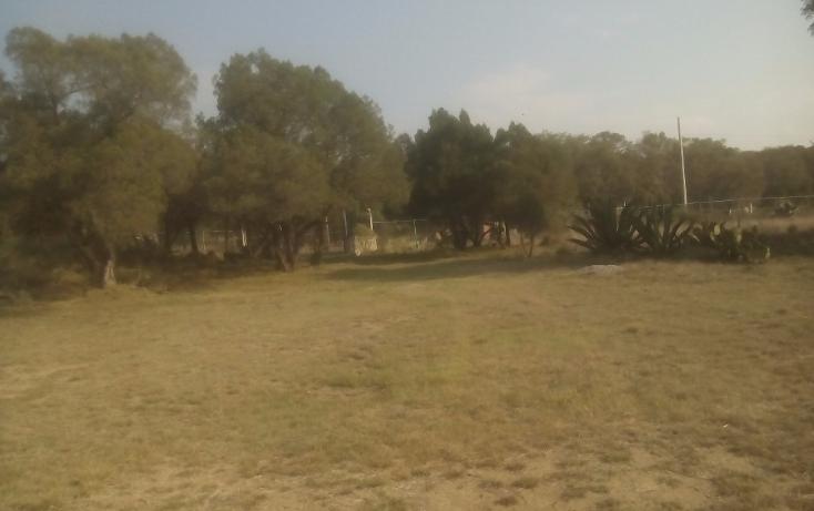 Foto de terreno habitacional en venta en  , santa maria texcalac, apizaco, tlaxcala, 1941371 No. 10
