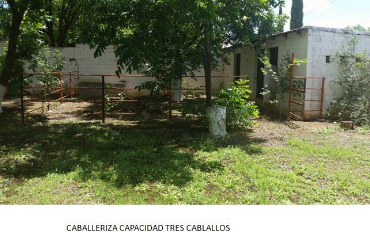 Foto de rancho en venta en, santa monica, chihuahua, chihuahua, 1018725 no 05