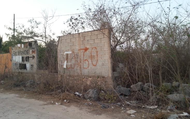 Foto de terreno habitacional en venta en  , santa rita cholul, m?rida, yucat?n, 2039572 No. 03