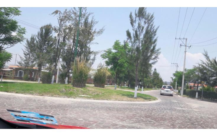 Foto de terreno habitacional en venta en  , santa rita (ejido refugio de ayala), cuerámaro, guanajuato, 1721244 No. 01