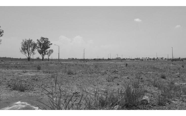 Foto de terreno habitacional en venta en  , santa rita (ejido refugio de ayala), cuerámaro, guanajuato, 1721244 No. 04