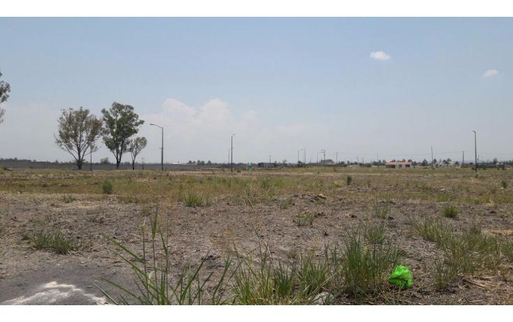 Foto de terreno habitacional en venta en  , santa rita (ejido refugio de ayala), cuerámaro, guanajuato, 1947686 No. 04