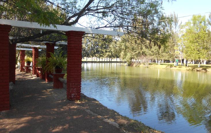 Foto de terreno habitacional en venta en  , santa rita, san francisco del rincón, guanajuato, 1636268 No. 05