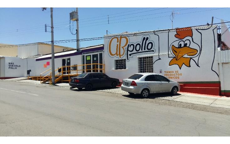Foto de nave industrial en venta en  , santa rosa, chihuahua, chihuahua, 2038184 No. 04