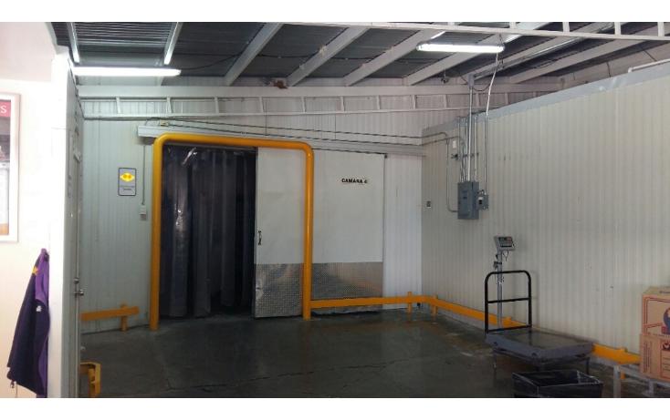 Foto de nave industrial en venta en  , santa rosa, chihuahua, chihuahua, 2038184 No. 08