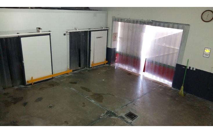 Foto de nave industrial en venta en  , santa rosa, chihuahua, chihuahua, 2038184 No. 09