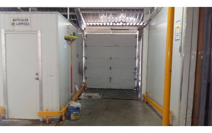 Foto de nave industrial en venta en  , santa rosa, chihuahua, chihuahua, 2038184 No. 13