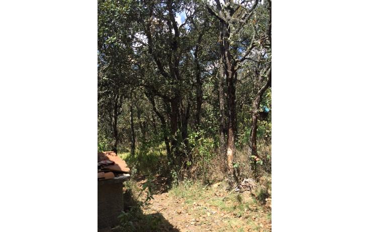 Foto de casa en venta en  , santa rosa de lima, guanajuato, guanajuato, 1684234 No. 10