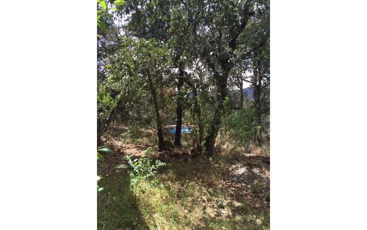 Foto de casa en venta en  , santa rosa de lima, guanajuato, guanajuato, 1684234 No. 11