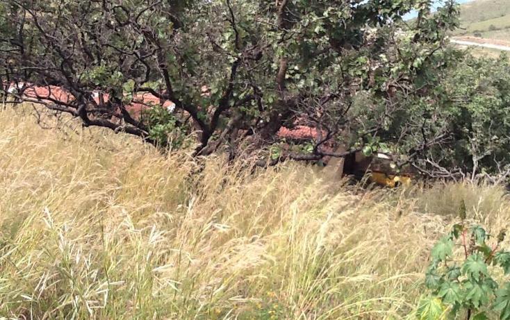 Foto de terreno habitacional en venta en  , santa sof?a hacienda country club, zapopan, jalisco, 1198733 No. 13