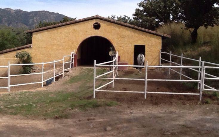 Foto de terreno habitacional en venta en, santa sofía hacienda country club, zapopan, jalisco, 1558916 no 07
