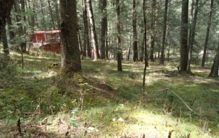 Foto de terreno habitacional en venta en, santa teresa, mineral del monte, hidalgo, 806039 no 03