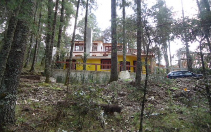 Foto de terreno habitacional en venta en, santa teresa, mineral del monte, hidalgo, 806039 no 04