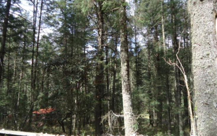 Foto de terreno habitacional en venta en, santa teresa, mineral del monte, hidalgo, 806039 no 06