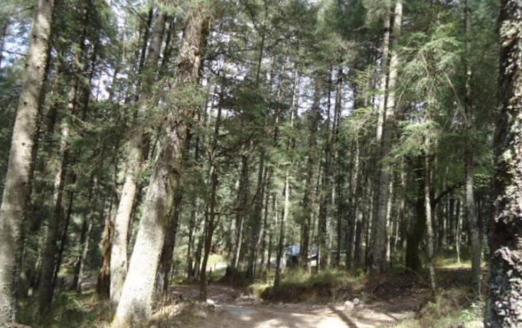Foto de terreno habitacional en venta en, santa teresa, mineral del monte, hidalgo, 806039 no 07