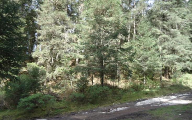 Foto de terreno habitacional en venta en  , santa teresa, mineral del monte, hidalgo, 806039 No. 08