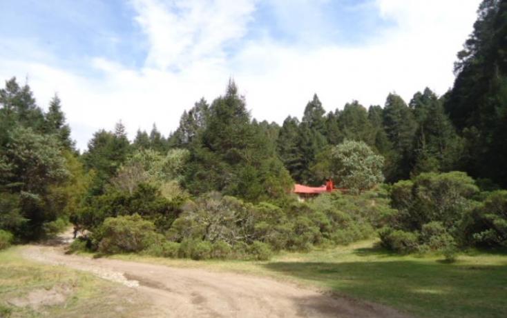 Foto de terreno habitacional en venta en, santa teresa, mineral del monte, hidalgo, 806039 no 09