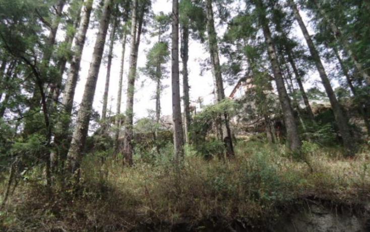 Foto de terreno habitacional en venta en, santa teresa, mineral del monte, hidalgo, 806039 no 27
