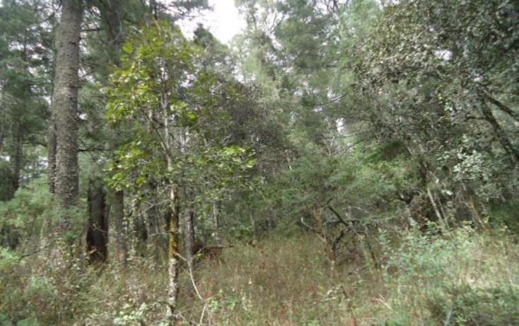 Foto de terreno habitacional en venta en  , santa teresa, mineral del monte, hidalgo, 806039 No. 28