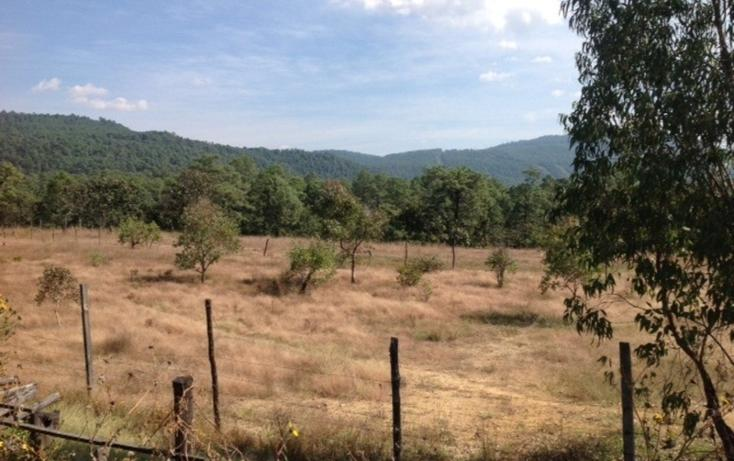 Foto de terreno habitacional en venta en  , santa teresa tilostoc, valle de bravo, méxico, 829519 No. 01