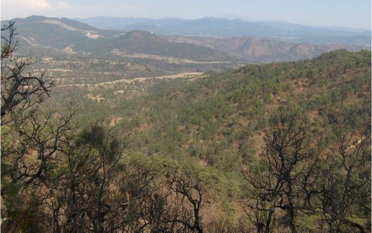 Foto de terreno habitacional en venta en  , santa teresa tilostoc, valle de bravo, méxico, 829519 No. 02