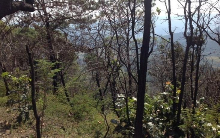 Foto de terreno habitacional en venta en  , santa teresa tilostoc, valle de bravo, méxico, 829519 No. 03