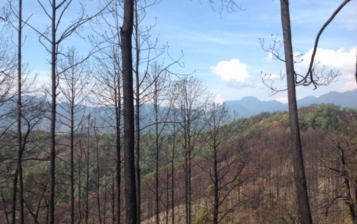 Foto de terreno habitacional en venta en  , santa teresa tilostoc, valle de bravo, méxico, 829519 No. 04