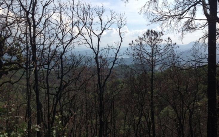 Foto de terreno habitacional en venta en  , santa teresa tilostoc, valle de bravo, méxico, 829519 No. 05