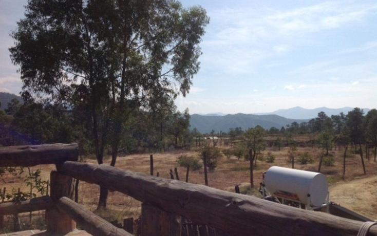 Foto de terreno habitacional en venta en  , santa teresa tilostoc, valle de bravo, méxico, 829519 No. 06