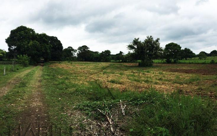 Foto de terreno industrial en venta en  , santiago de la peña, tuxpan, veracruz de ignacio de la llave, 1063641 No. 02