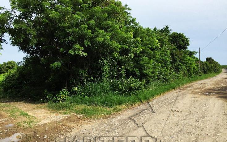 Foto de terreno industrial en venta en  , santiago de la peña, tuxpan, veracruz de ignacio de la llave, 1063641 No. 05