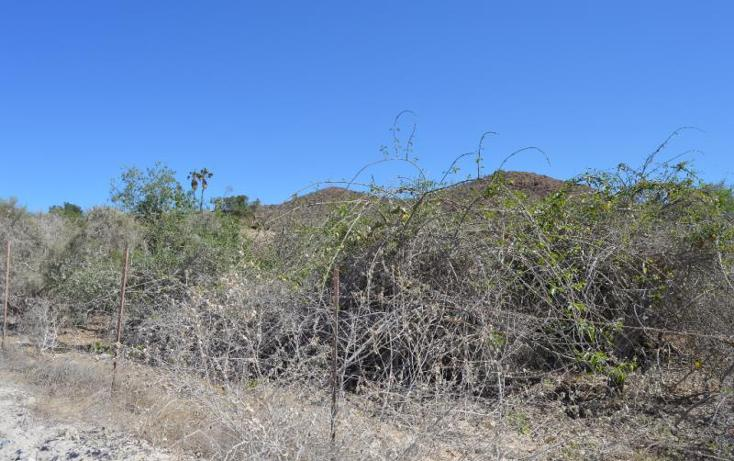 Foto de terreno comercial en venta en  , santiago, los cabos, baja california sur, 1219623 No. 04