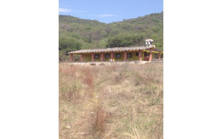 Foto de terreno habitacional en venta en  , santiago mihuacan, izúcar de matamoros, puebla, 1959829 No. 01