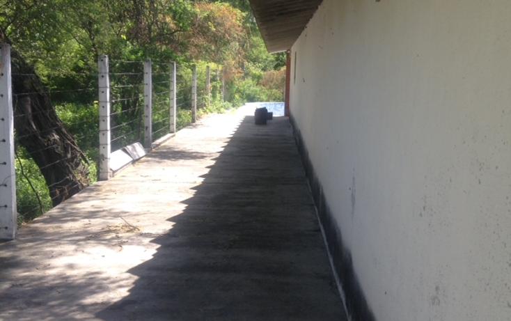 Foto de terreno habitacional en venta en  , santiago mihuacan, izúcar de matamoros, puebla, 1959829 No. 04