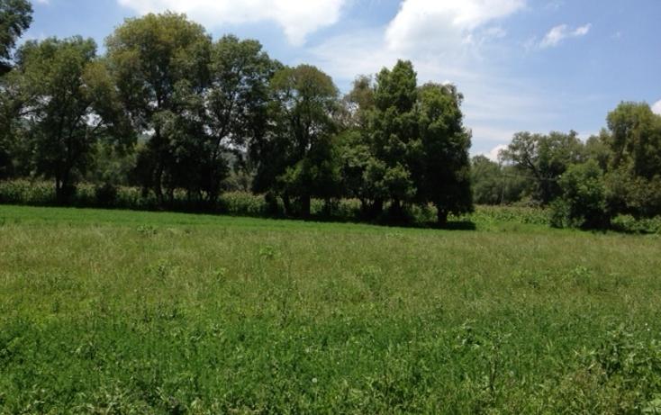 Foto de terreno habitacional en venta en santiago , tepeji, tepeji del río de ocampo, hidalgo, 450264 No. 02
