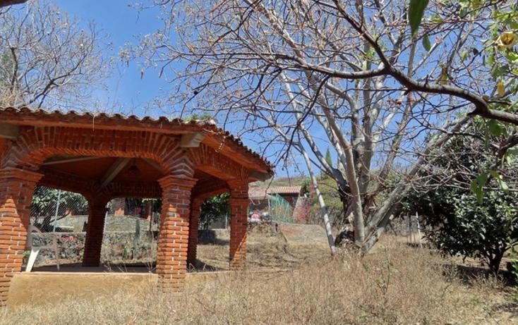 Foto de terreno habitacional en venta en  , santiago tepetlapa, tepoztlán, morelos, 1301093 No. 05