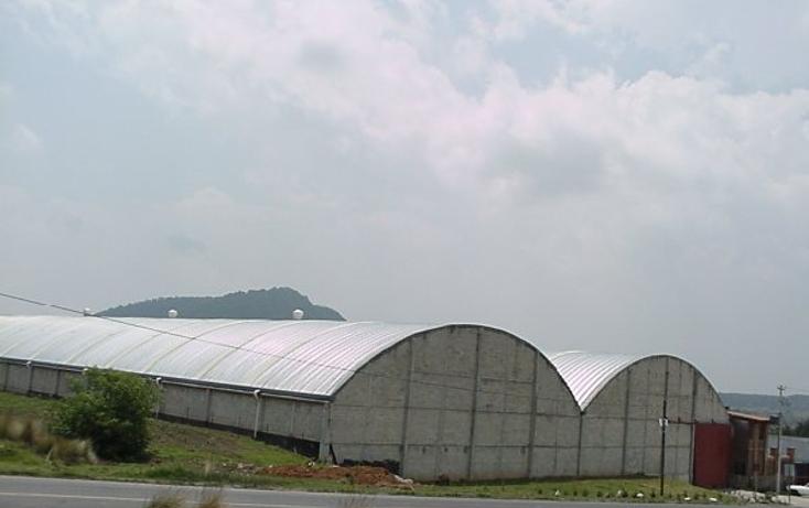 Foto de nave industrial en venta en  , santiago tilapa, tianguistenco, m?xico, 1405319 No. 04