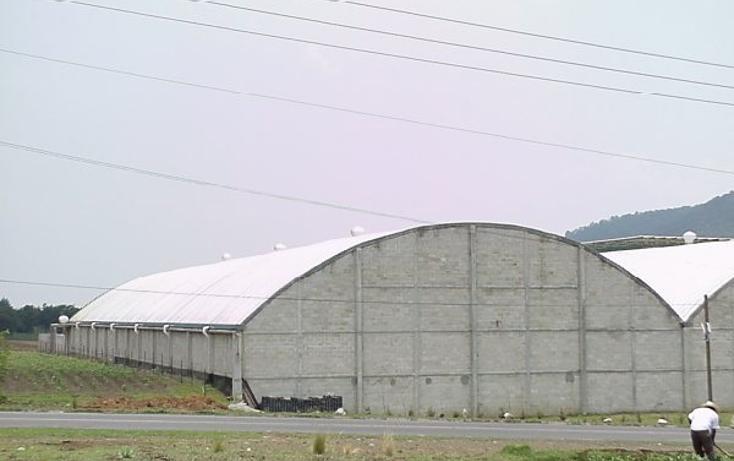 Foto de nave industrial en venta en  , santiago tilapa, tianguistenco, m?xico, 1405319 No. 11