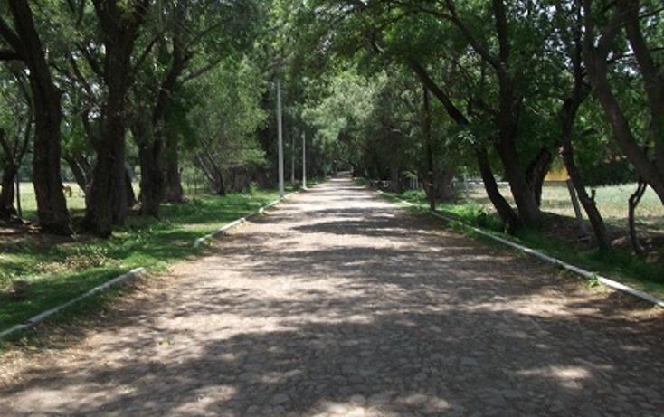 Foto de rancho en venta en  , santiago tlautla, tepeji del río de ocampo, hidalgo, 669497 No. 11