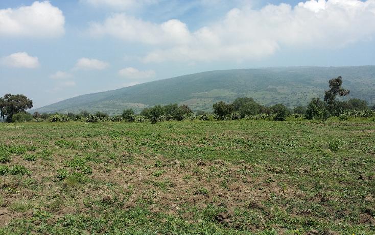 Foto de terreno comercial en venta en  , santiago tolman, otumba, m?xico, 1049699 No. 02