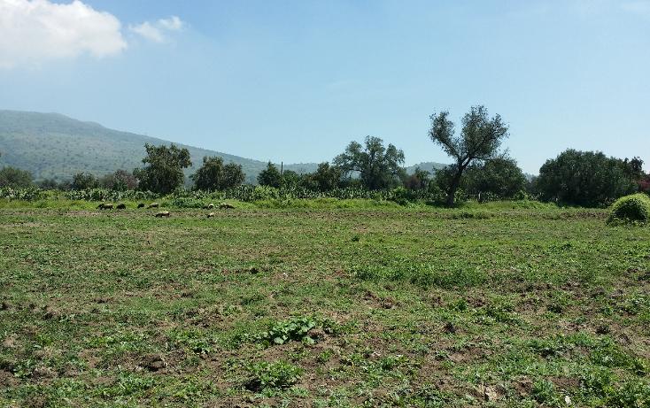 Foto de terreno comercial en venta en  , santiago tolman, otumba, m?xico, 1049699 No. 05