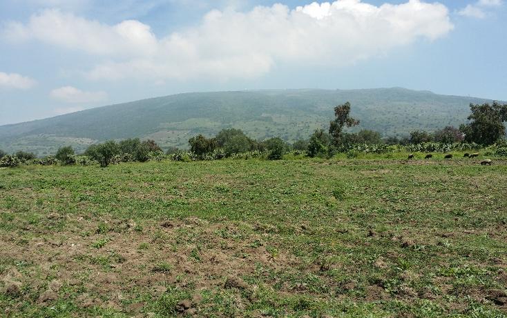 Foto de terreno comercial en venta en  , santiago tolman, otumba, m?xico, 1049699 No. 12