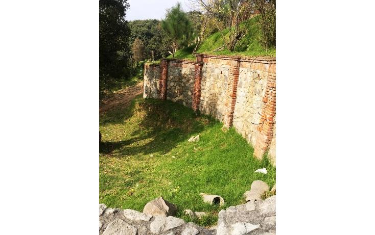 Foto de terreno habitacional en venta en  , santiago yancuitlalpan, huixquilucan, m?xico, 1657397 No. 12