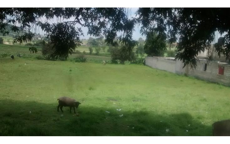 Foto de terreno habitacional en venta en  , santiaguito tlalcilalcali, almoloya de juárez, méxico, 1297967 No. 07