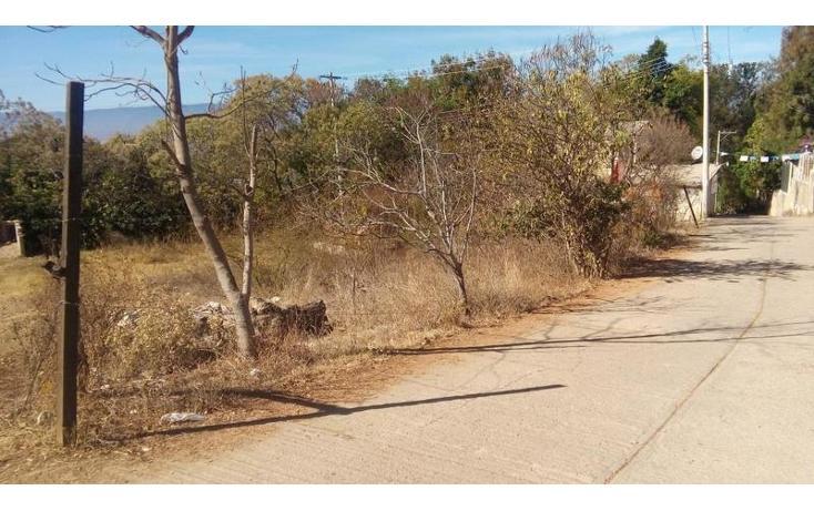 Foto de terreno habitacional en venta en  , santo domingo barrio alto, villa de etla, oaxaca, 1640457 No. 02
