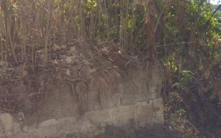 Foto de terreno habitacional en venta en, santo domingo barrio alto, villa de etla, oaxaca, 1640457 no 03